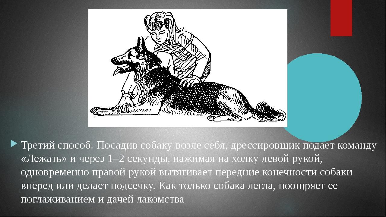Безусловные раздражители — воздействие левой рукой на живот собаки, подтягива...