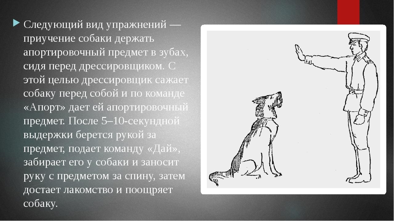 Выгуливая собаку на укороченном поводке, постепенно приближается к раздражите...
