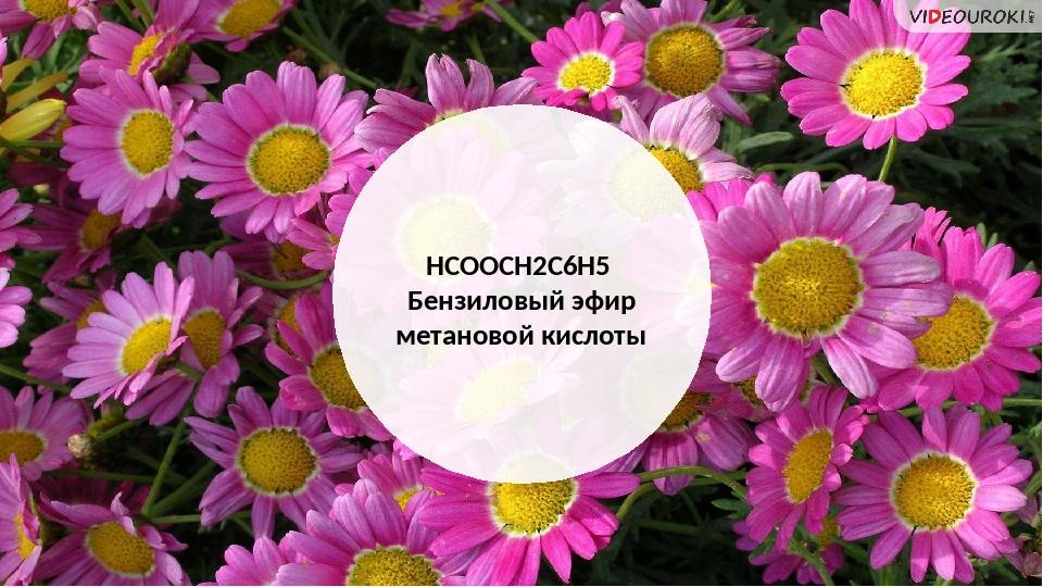 HCOOCH2C6H5 Бензиловый эфир метановой кислоты