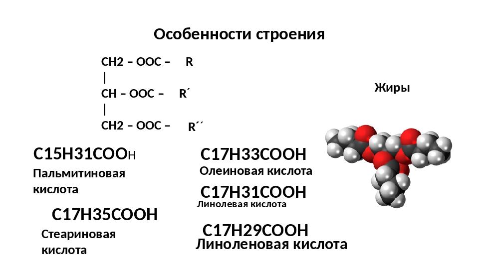 Особенности строения Жиры CH2 – OОС – | CH – OОС – | CH2 – OОС – R R´ R´´ С15...