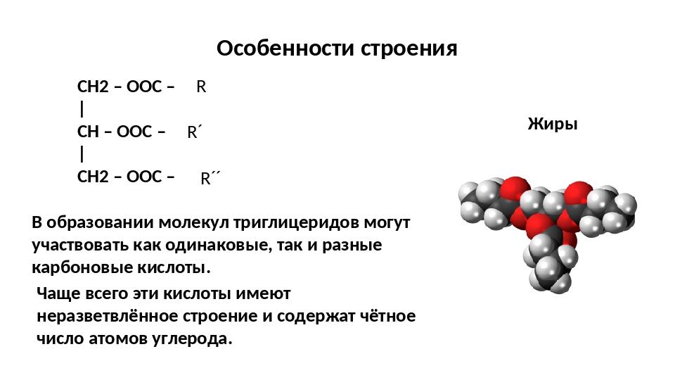 Особенности строения Жиры CH2 – OОС – | CH – OОС – | CH2 – OОС – R R´ R´´ В...