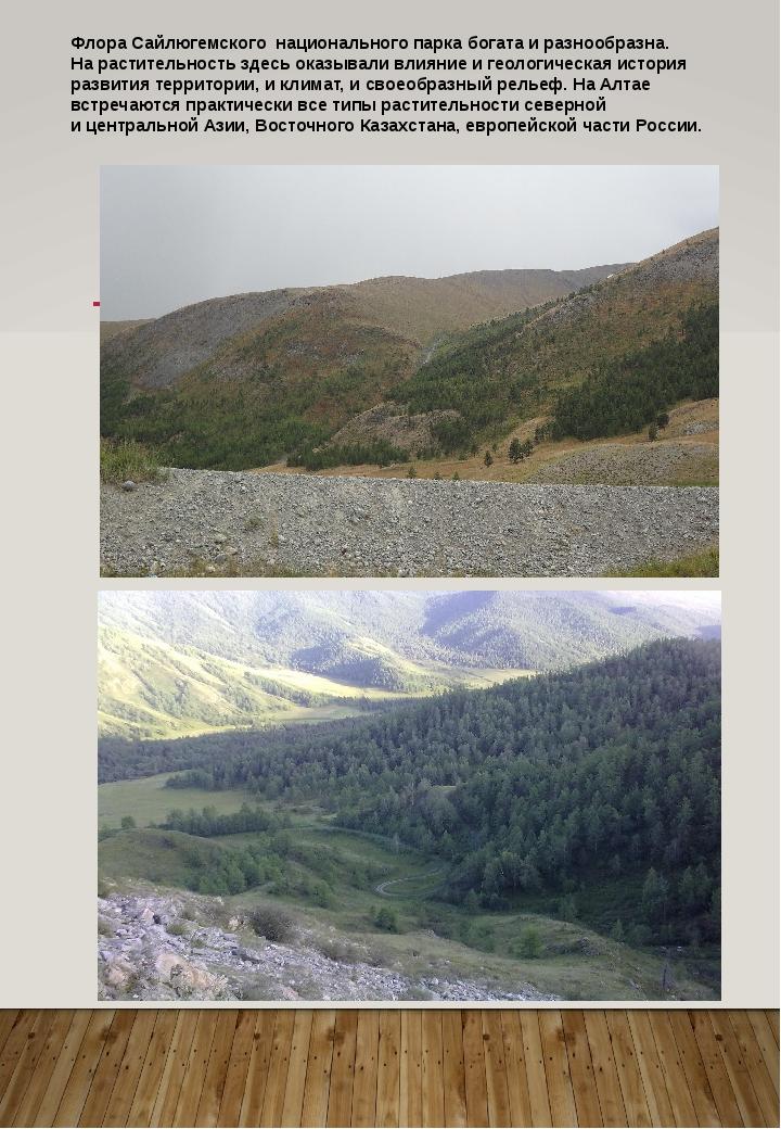 Флора Сайлюгемского национального парка богата иразнообразна. Нарастительно...