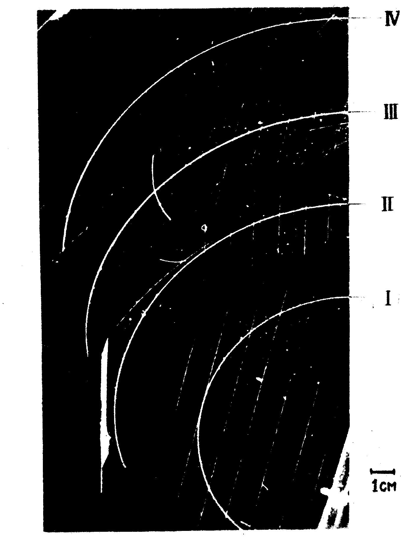 Изучение фотографий треков заряженных частиц