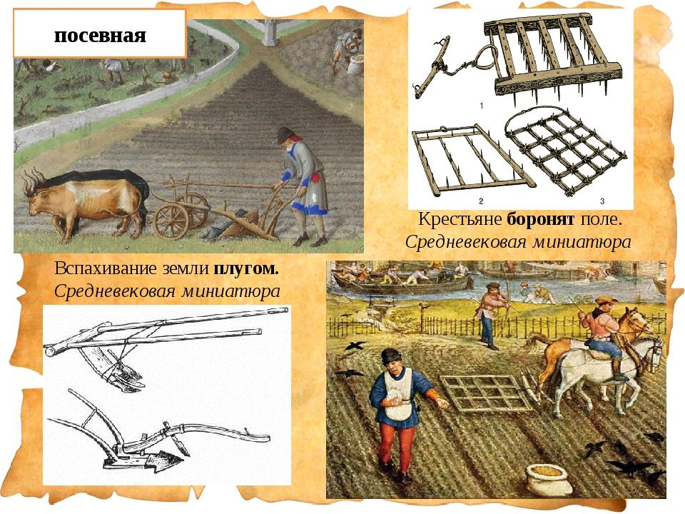 Вспахивание земли плугом. Средневековая миниатюра Крестьяне боронят поле. Сре...