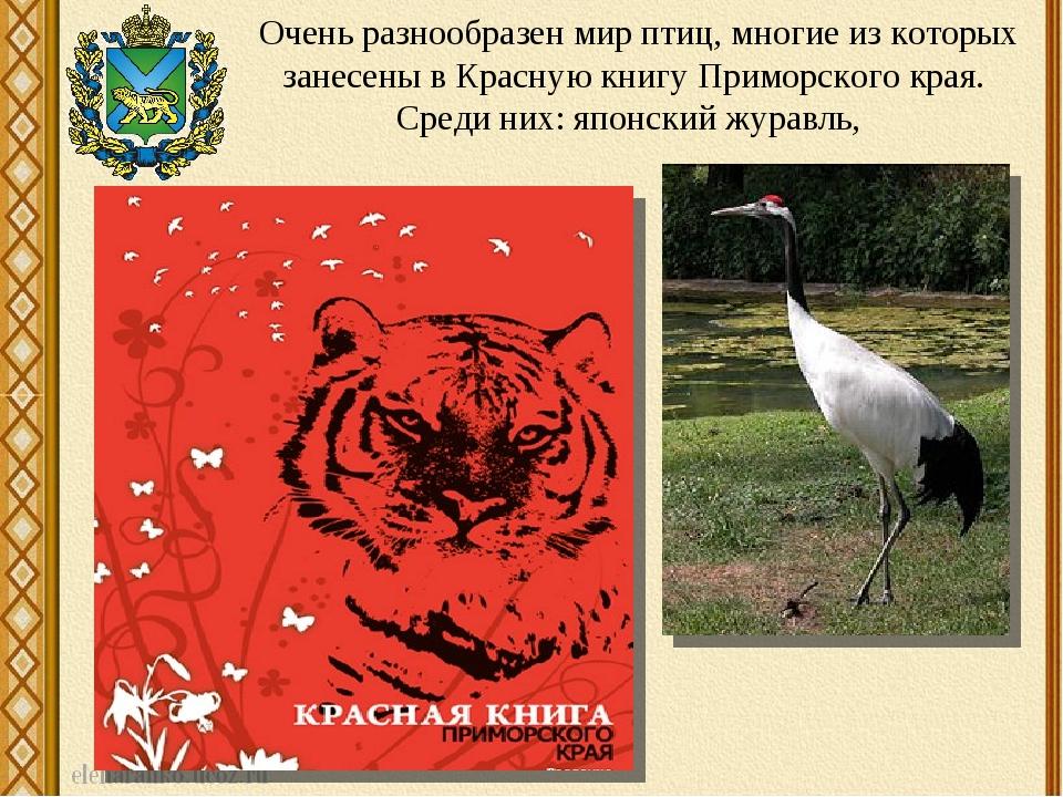 Красная книга приморского края картинка