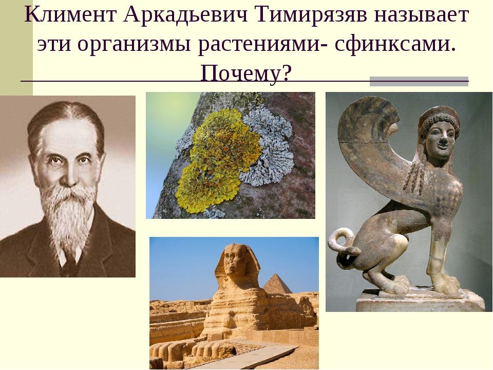 Климент Аркадьевич Тимирязяв называет эти организмы растениями- сфинксами. По...