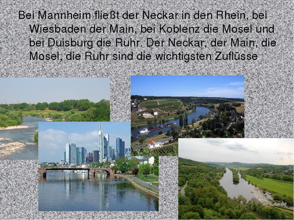 Bei Mannheim fließt der Neckar in den Rhein, bei Wiesbaden der Main, bei Kobl...