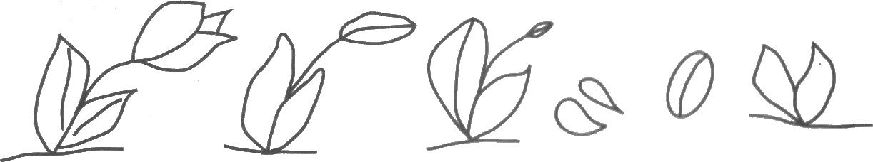 позволило сделать картинка семечко росток побег бутон цветок психиатрические адреса
