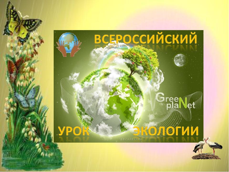 Экологические мероприятия