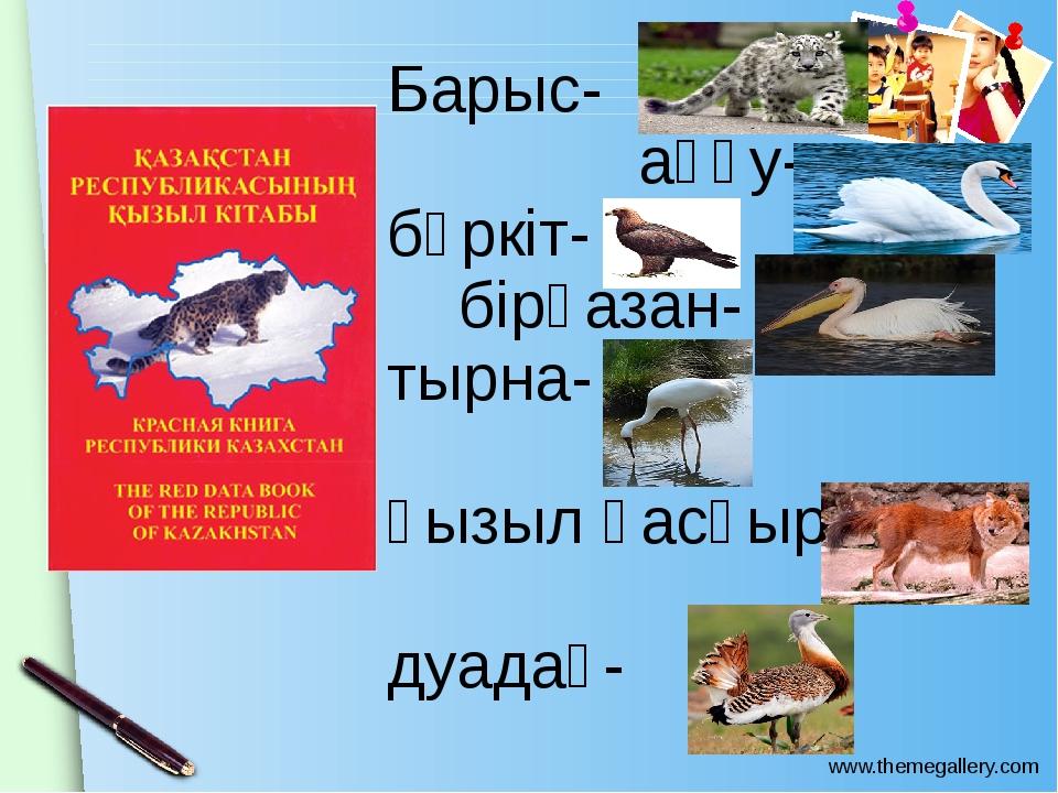 Барыс- аққу- бүркіт- бірқазан- тырна- қызыл қасқыр- дуадақ- www.themegallery....
