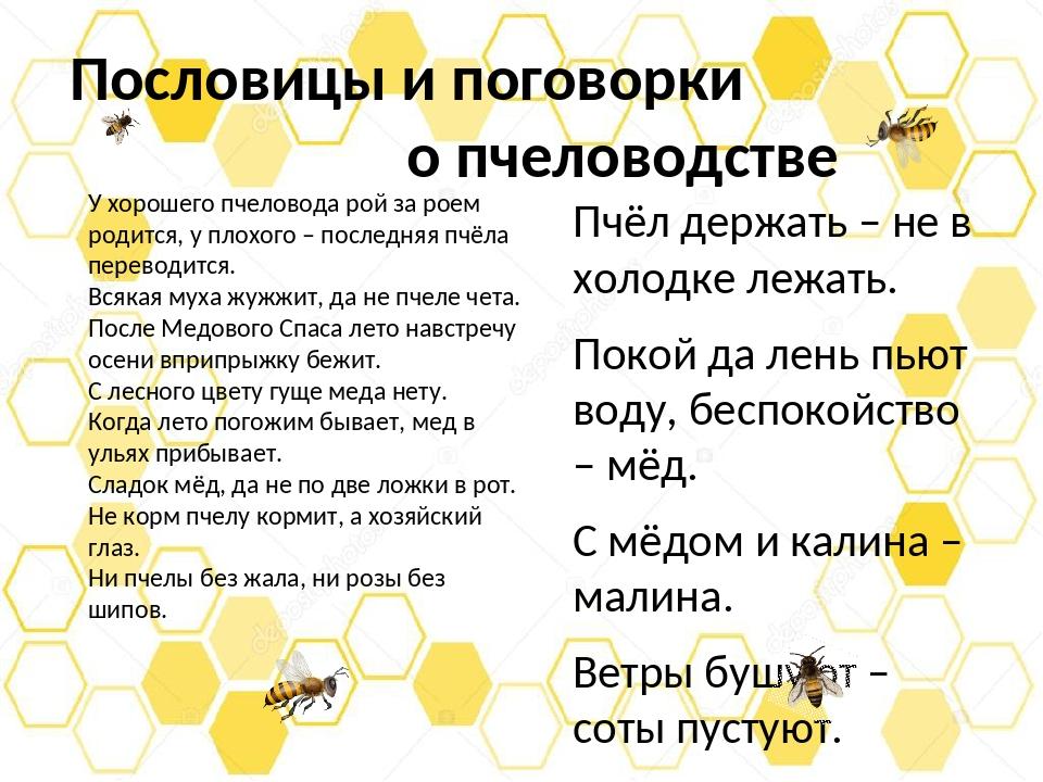 Пословицы и поговорки о пчеловодстве Пчёл держать – не в холодке лежать. Поко...