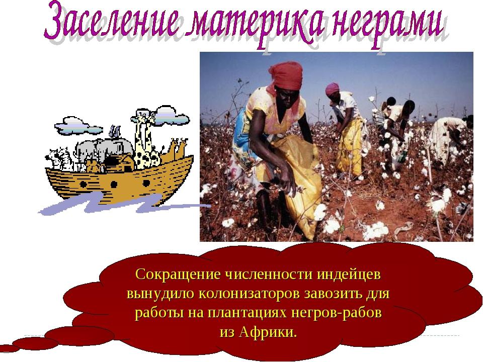 Сокращение численности индейцев вынудило колонизаторов завозить для работы на...