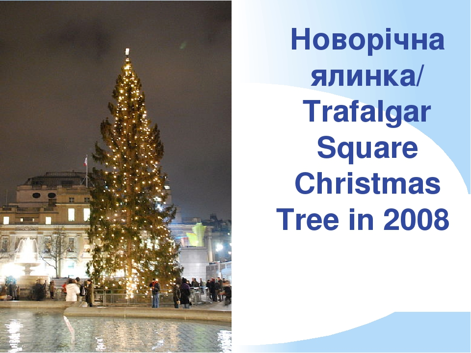 Новорічна ялинка/ Trafalgar Square Christmas Tree in 2008