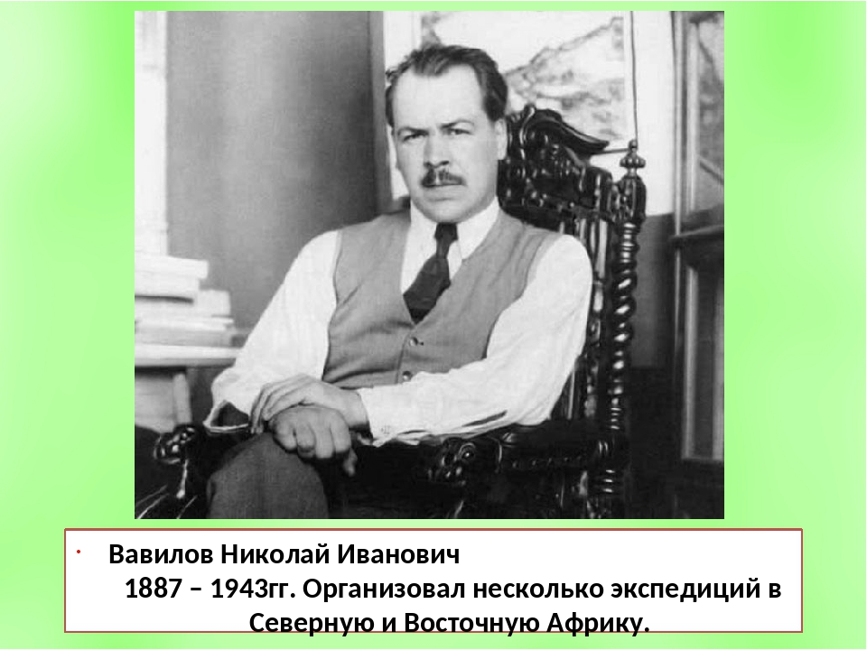 Вавилов Николай Иванович 1887 – 1943гг. Организовал несколько экспедиций в Се...