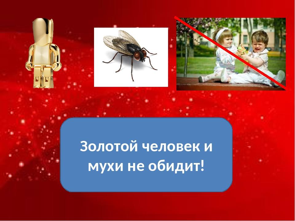 ? Золотой человек и мухи не обидит!