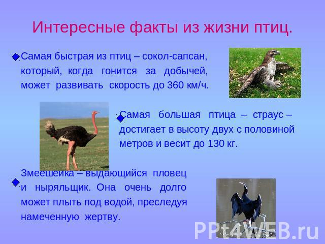 hello_html_m2a730960.jpg