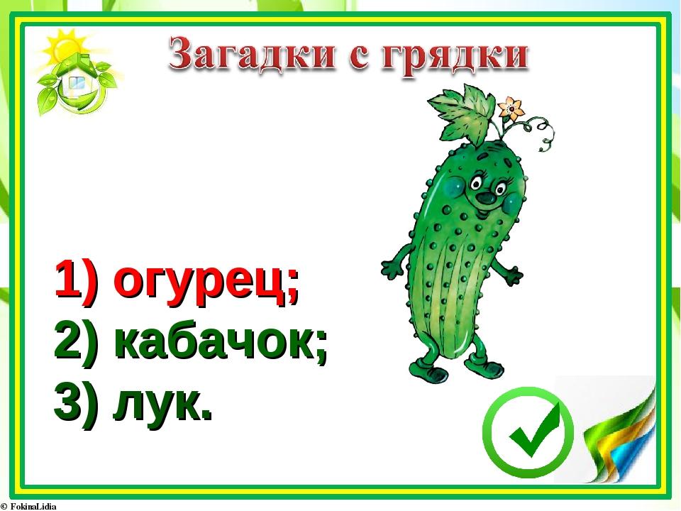 1) огурец; 2) кабачок; 3) лук.