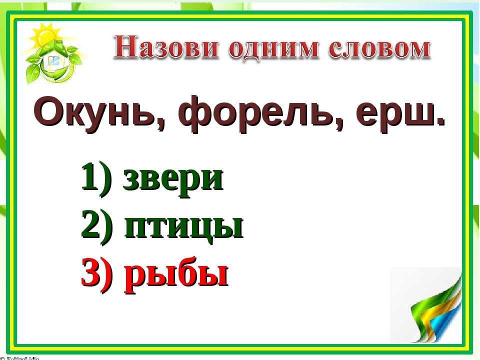 Окунь, форель, ерш. 1) звери 2) птицы 3) рыбы
