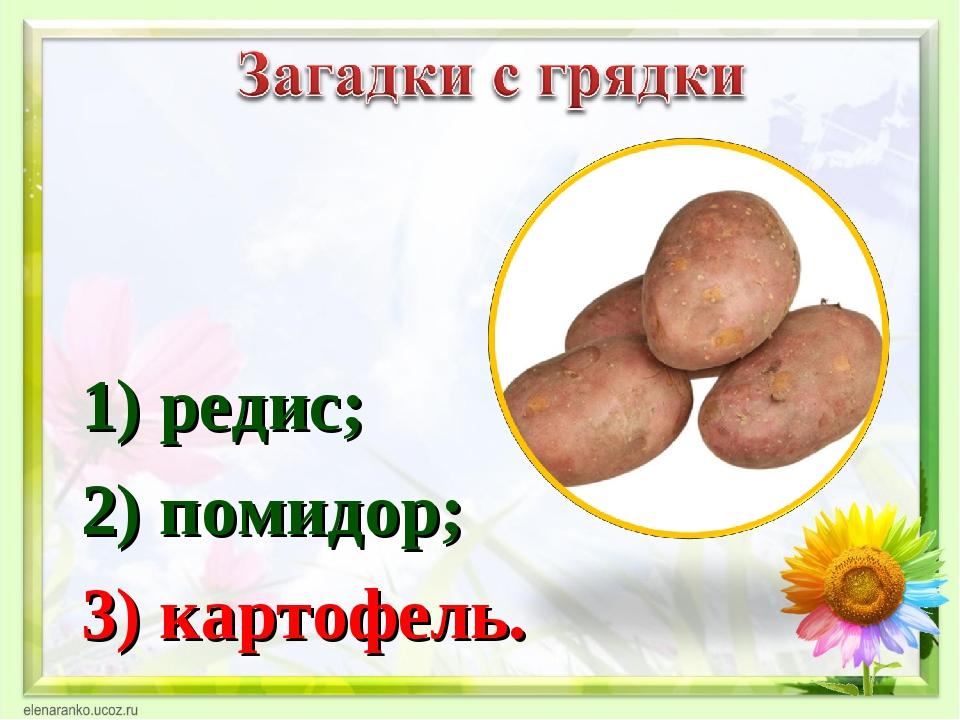 1) редис; 2) помидор; 3) картофель.