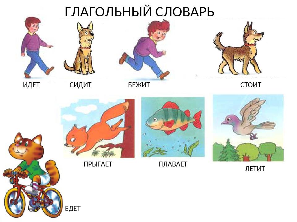 Картинки глагол лежит