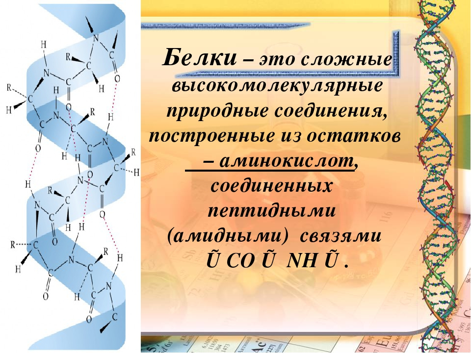 Белки – это сложные высокомолекулярные природные соединения, построенные из о...