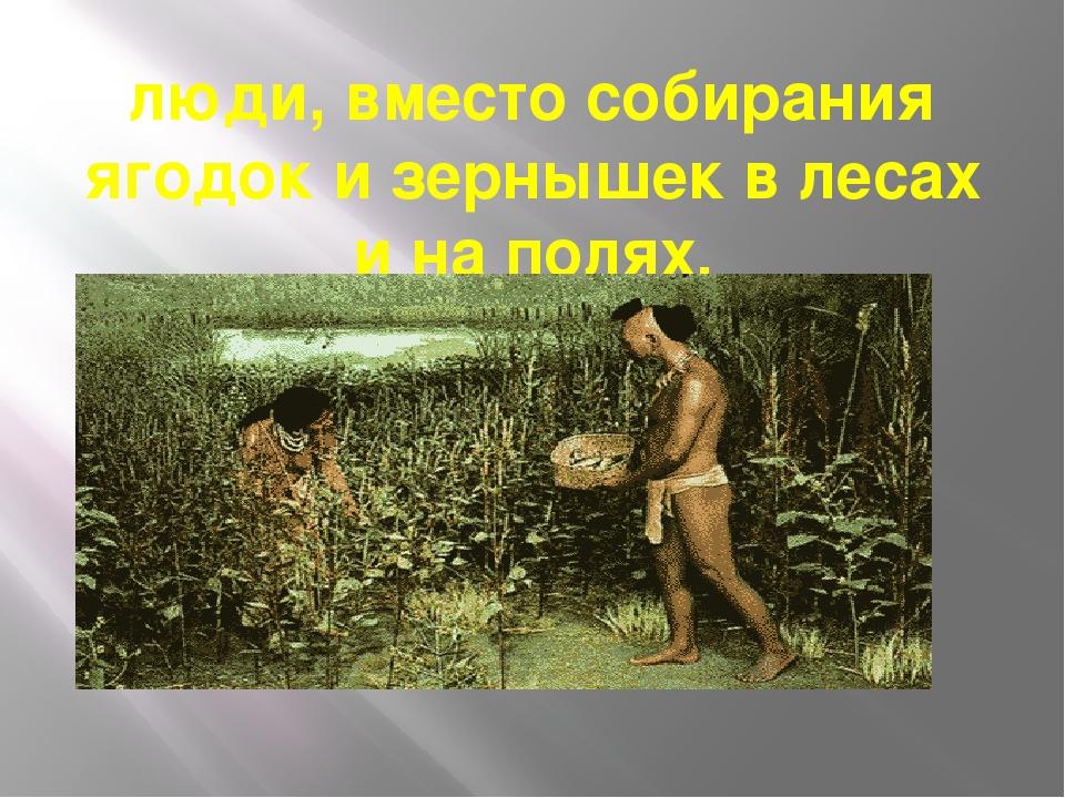 люди, вместо собирания ягодок и зернышек в лесах и на полях,