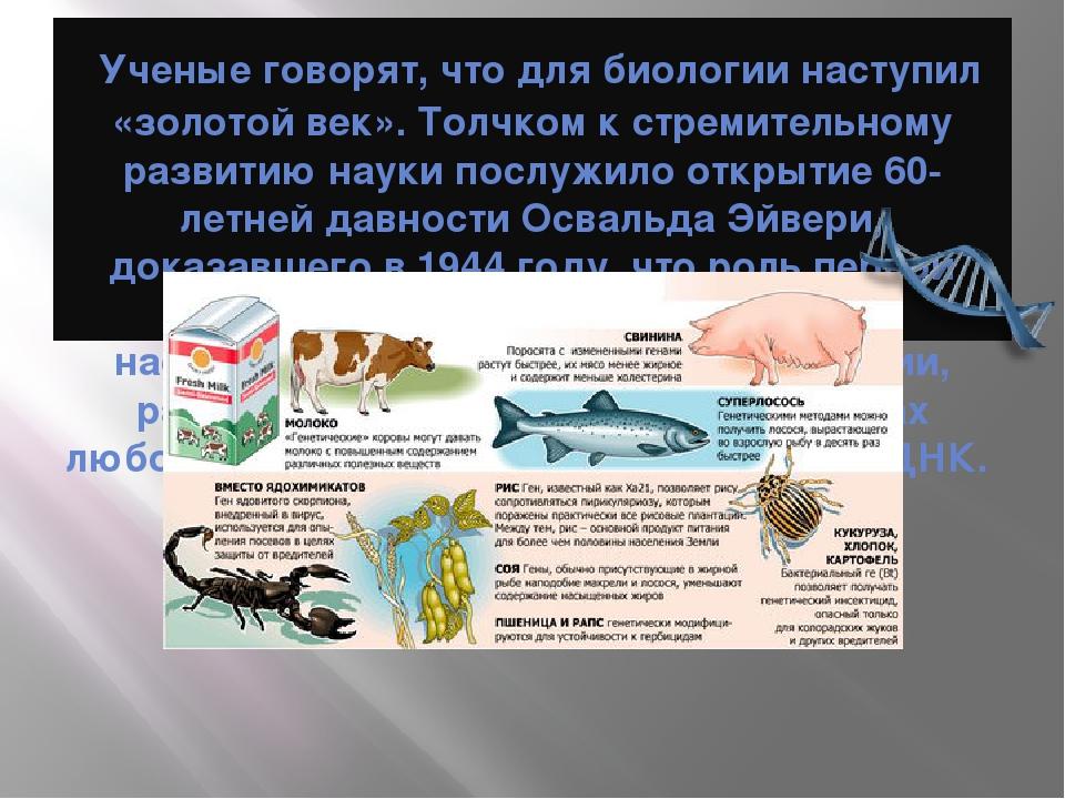 Ученые говорят, что для биологии наступил «золотой век». Толчком к стремител...