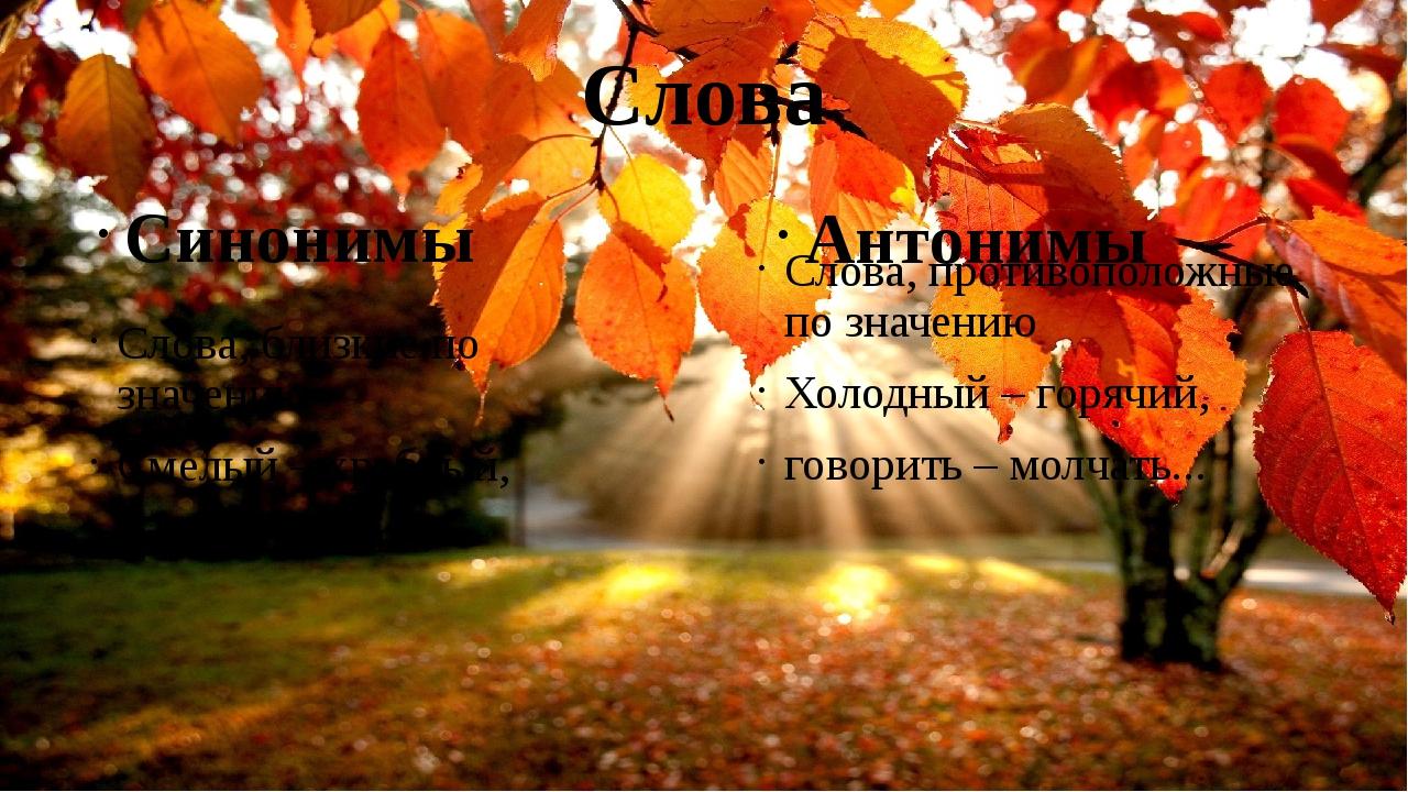 Слова Слова, близкие по значению Смелый – храбрый, идти – шагать... Синонимы...