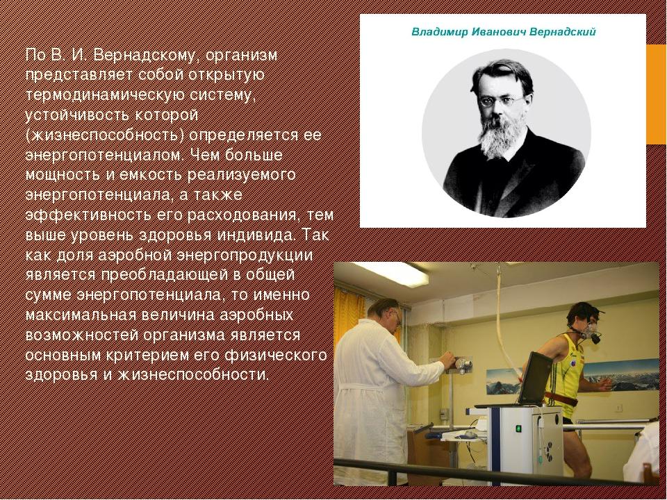 По B. И. Вернадскому, организм представляет собой открытую термодинамическую...