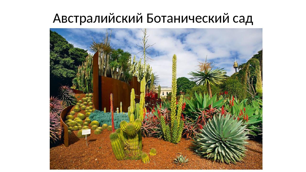 Австралийский Ботанический сад