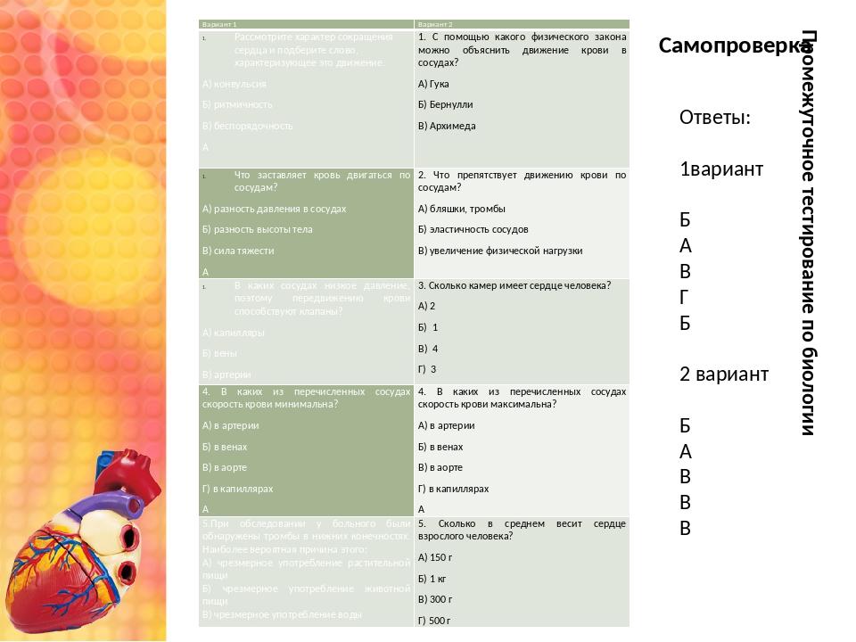 Промежуточное тестирование по биологии Ответы: 1вариант Б А В Г Б 2 вариант Б...