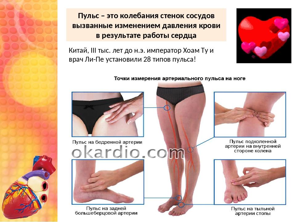Пульс – это колебания стенок сосудов вызванные изменением давления крови в ре...