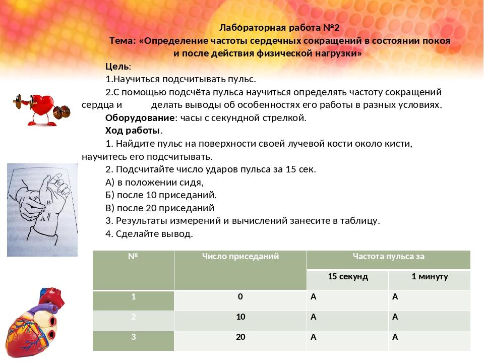 . Лабораторная работа №2 Тема: «Определение частоты сердечных сокращений в со...