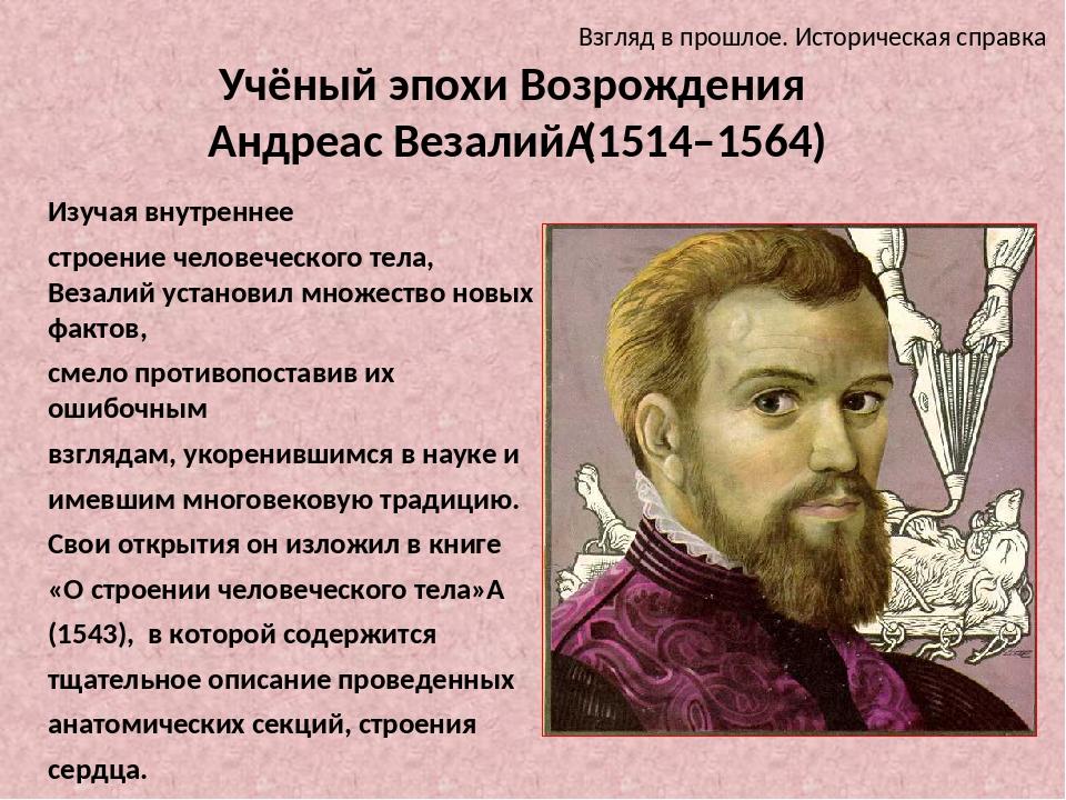 Учёный эпохи Возрождения Андреас Везалий(1514–1564) Изучая внутреннее строен...