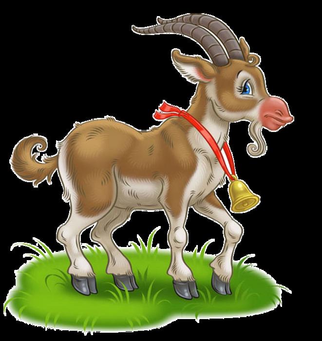 Картинка козы для детей, жизни