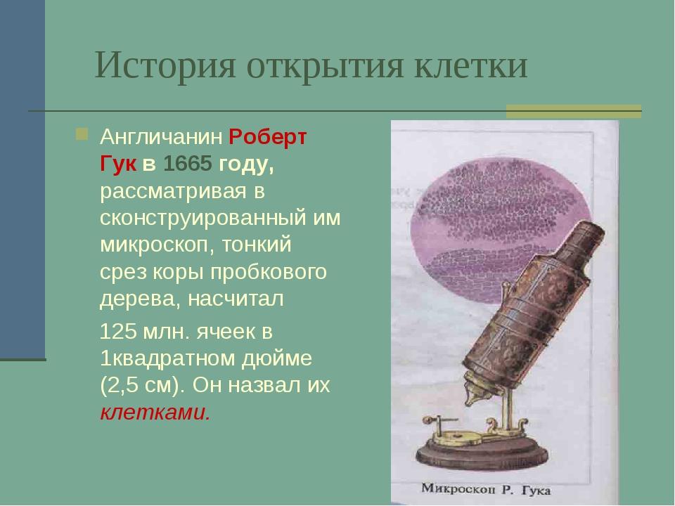 История открытия клетки Англичанин Роберт Гук в 1665 году, рассматривая в ско...