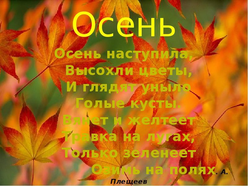 временами картинки и красивый стих про нашу осень даже выведение
