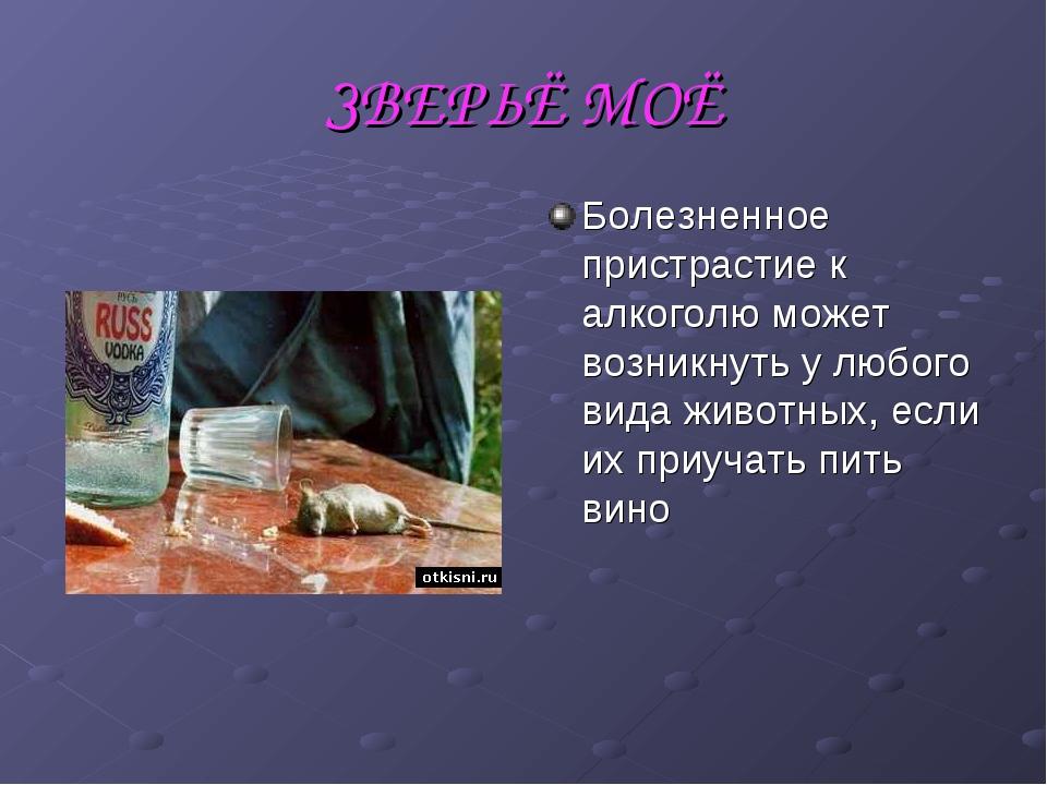 ЗВЕРЬЁ МОЁ Болезненное пристрастие к алкоголю может возникнуть у любого вида...