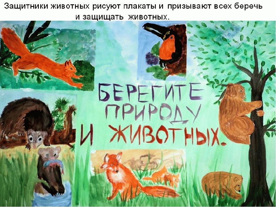наполнен плакат о животных это углубление