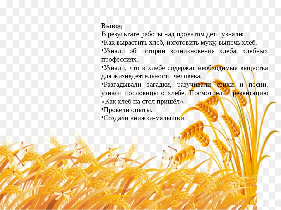 Вывод В результате работы над проектом дети узнали: Как вырастить хлеб, изгот...