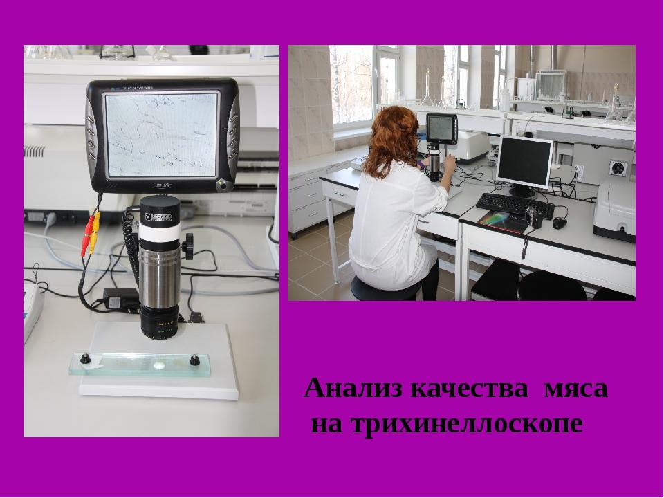 Анализ качества мяса на трихинеллоскопе