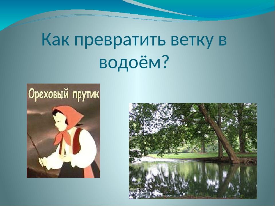 По какой стране путешествовал Андрей Устинович Гаракин?