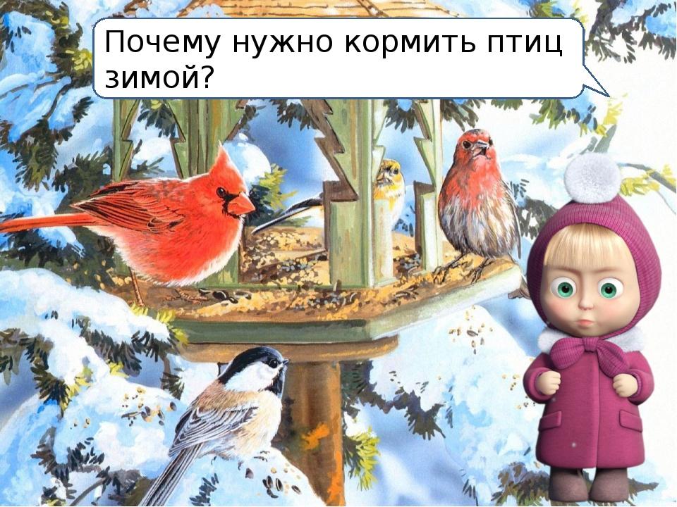 покормить птицу картинка словам, она давно