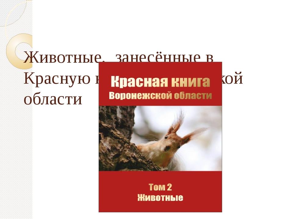 Животные, занесённые в Красную книгу Воронежской области