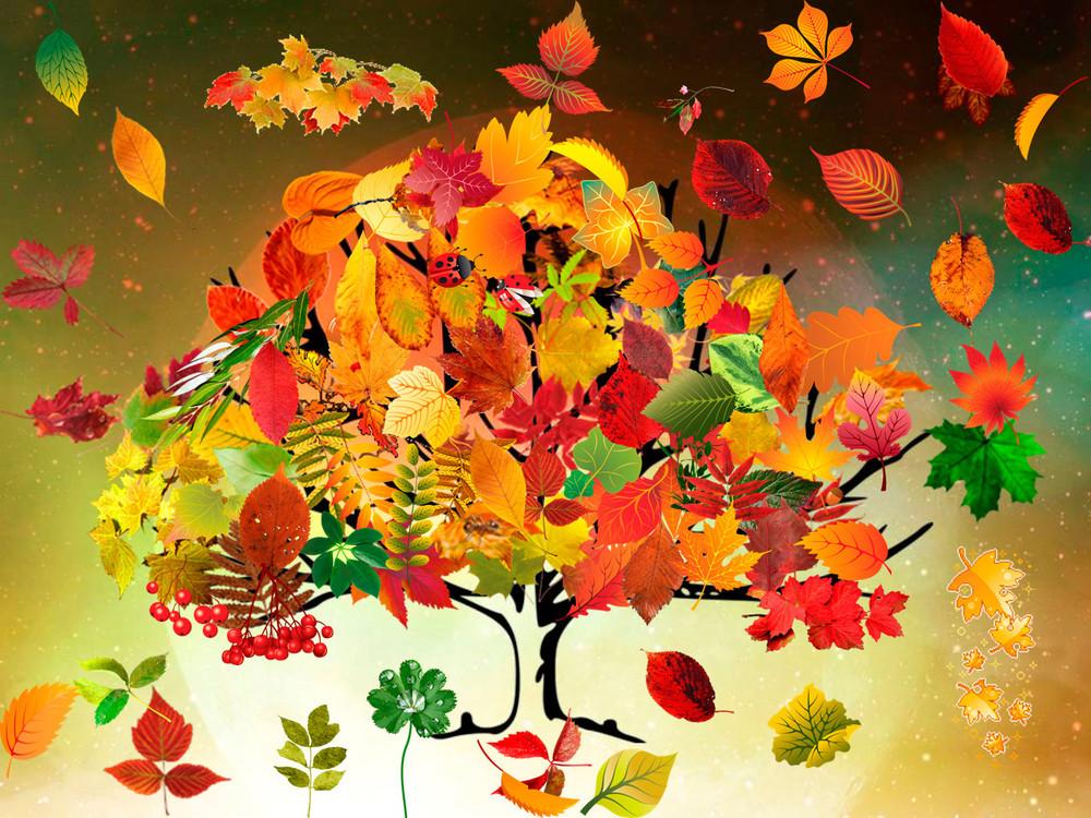 Яркие картинки осени для детского сада