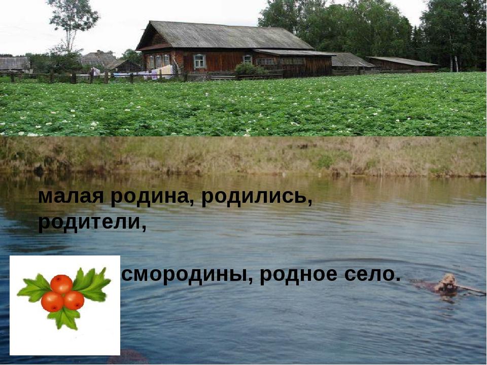 малая родина, родились, родители, аромат смородины, родное село.