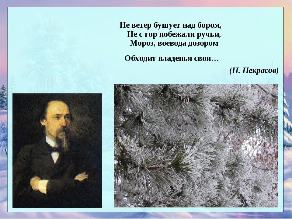 стихи некрасова не ветер бушует над бором российской марки