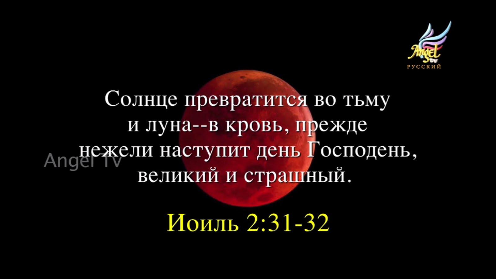 hello_html_m5d9b846.jpg