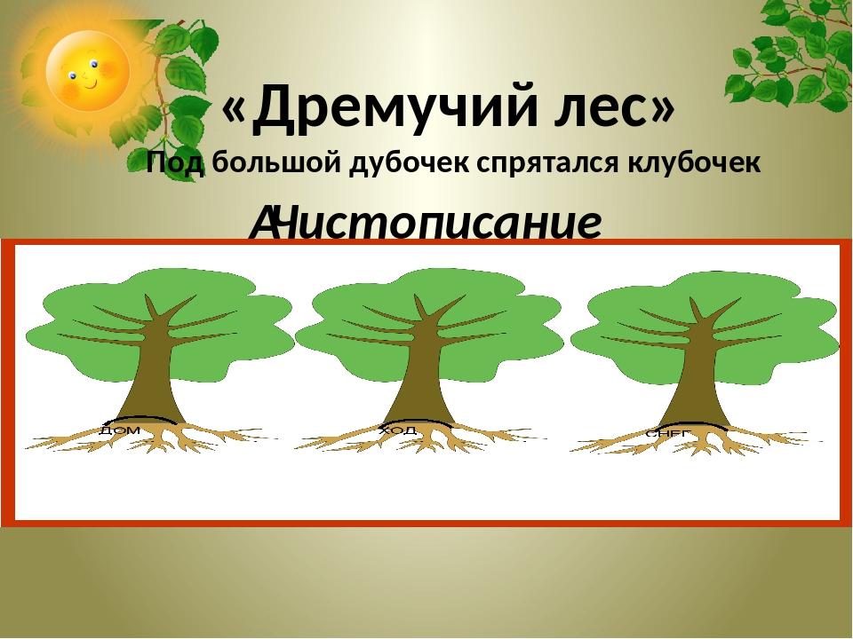 Чистописание «Дремучий лес» Под большой дубочек спрятался клубочек