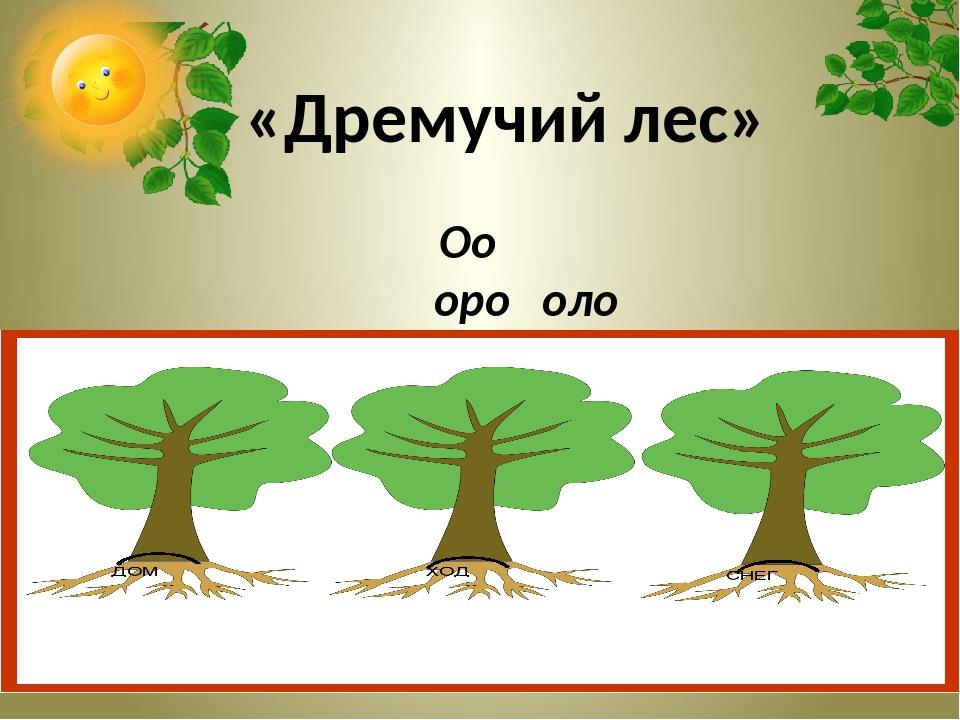 Оо оро оло  «Дремучий лес»